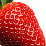 Erdbeere ohne Zucker
