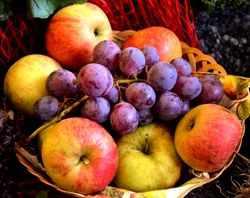 Frisches Obst ist besser als Vitaminpräparate