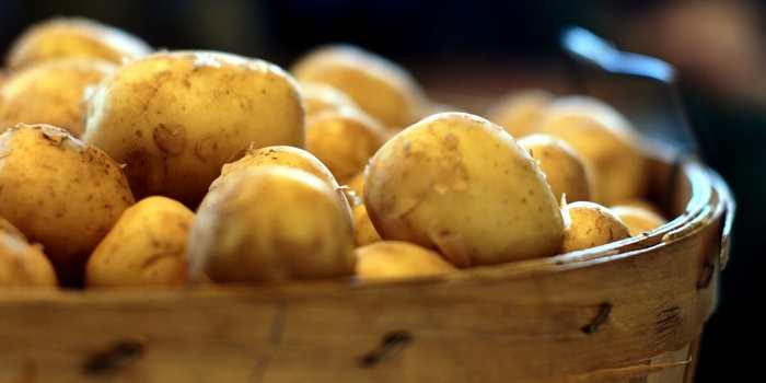 Kartoofeln - die Zitronen des Südens