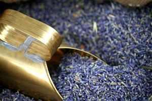 Lavendel für die eigene Kosmetikherstellung