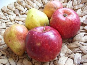 Fatburner: heimische Obstsorten für den Fettstoffwechsel