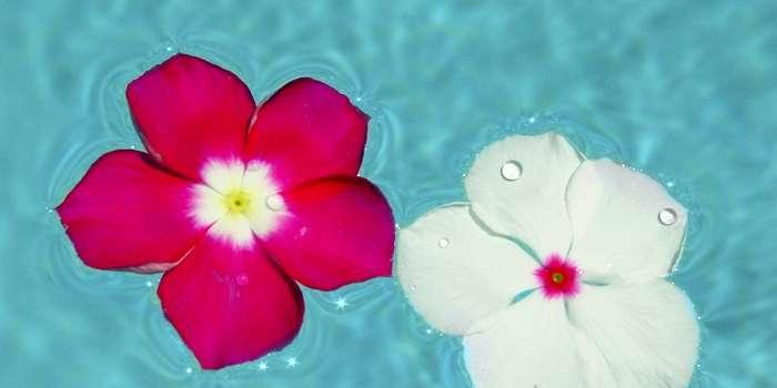 Floating entspannt Geist und Körper