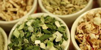 Brühgranulat aus Gemüseresten selbst gemacht