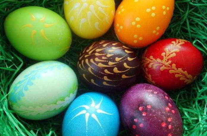 Ostereier kreativ mit Pflanzenfarbe färben