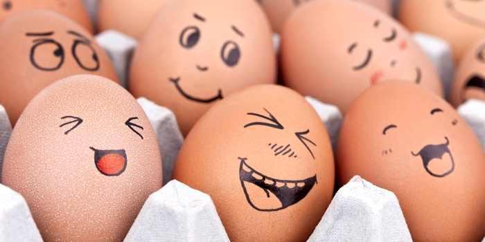 Eier sind gesünder als angenommen