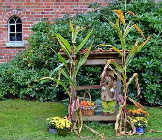 Herbstliche Gartengestaltung: Ort der Ruhe und Entspannung