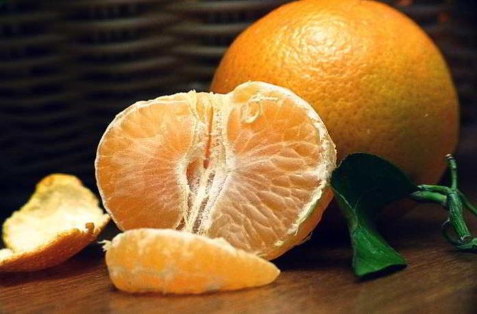 Mandarinen - viel mehr als nur ideale Diätbegleiter
