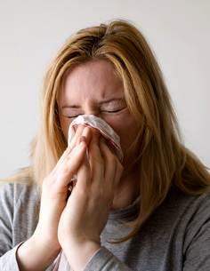 petersilienwurzel hilft bei Erkältungen