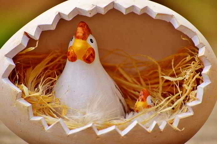 Es gibt ausreichend viele Alternativen zu Eiern
