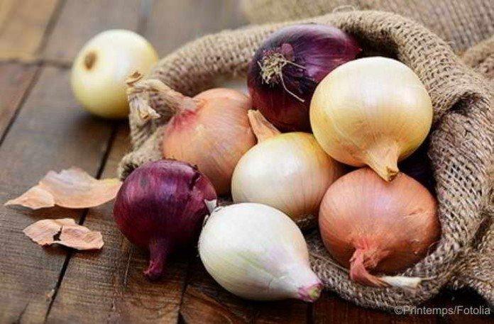 Weiße, rote oder gelbe Zwiebeln. Welche Sorte ist am gesündesten?