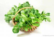 Der mineralreiche Portulak wächst auch im eigenen Garten