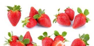 Erdbeeren zu jeder Jahreszeit für Back- & Kochaktionen