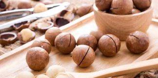 Die Macadamia Nuss ist in der Küche und Kosmetik sehr variabel einsetzbar