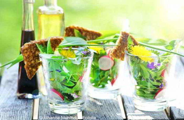Leichte Frühlingssalate - gesund, kalorienarm und schnell zubereitet