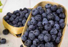 DIY Blaubeeren Ketchup und Pudding - gesund und super lecker