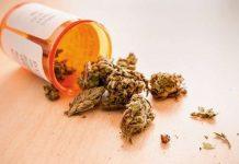 HWS-Syndrom: Ist medizinisches Cannabis das neue Heilmittel?