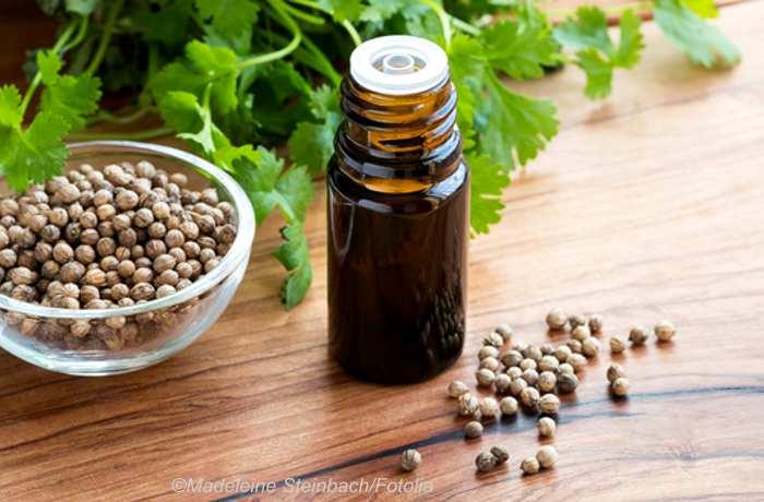 Korianderöl für gesunde Haut, Haare und als Schutz vor Keimen