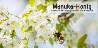 Manuka-Honig - Herkunft, Herstellung, Wirkstoffe,