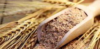 Gesunde Weizenkleie hilft nicht nur beim Abnehmen