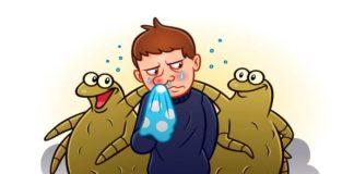 Milben biologisch bekämpfen - ohne Chemie