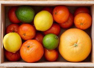 Zitrusfrüchte richtig lagern - so halten sie länger