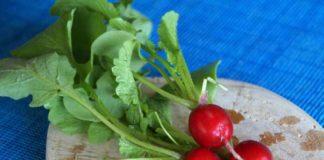 Gesunde Gemüseblätter - viele sind essbar und lecker