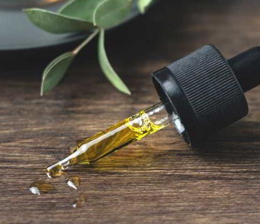Kann man mit CBD-Öl wirklich abnehmen?